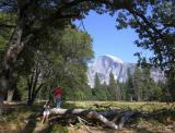 Not Shooting Half Dome [D]