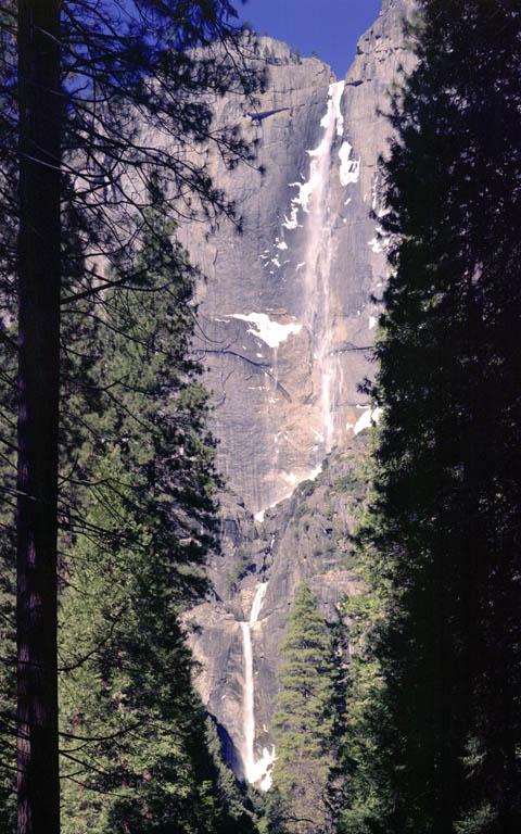 Yosemite Falls [4x5]