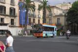 The missing bus.jpg