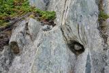 Devil's Footprints at Keels (close-up)