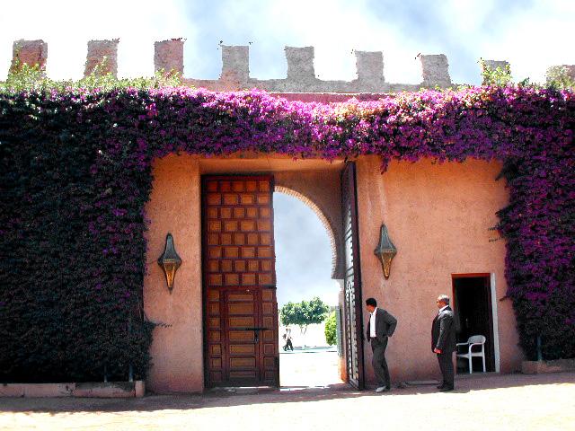 Marrakech Wall copy.jpg