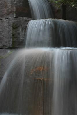 FDR falls