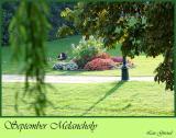Melancholy in September - Sept. 11-04
