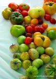 8.28 greenmarket heirlooms