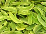 8.28 greenmarket lima beans