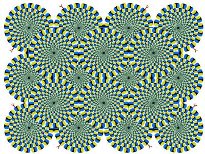 Opticans Illusion