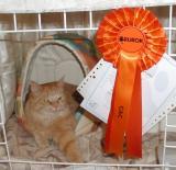 Linda became Champion!