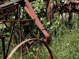 Rusted out.jpg(302)