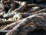Rope.jpg(110)