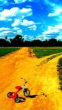 Two roads diverged... - by Bob L
