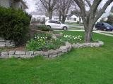 4/17   The view of the front bed from the south side, Poppies to come!