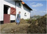 De Rozenhof in Bruisterbosch Margraten