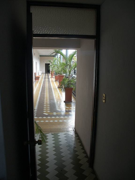 2604 From my doorway.jpg