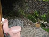 my outside toilet