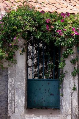 Blue door to the garden