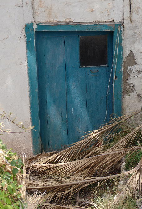 Blue door with old leaves