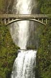 Multnoma-Bridge.jpg