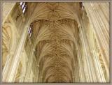 A Lofty Ceiling