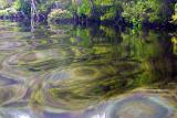 Reflections from boat wake in Gordon River