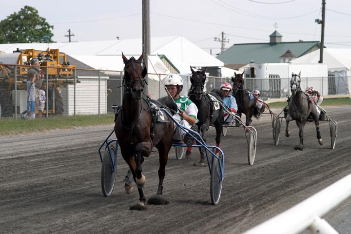Horse Race.jpg