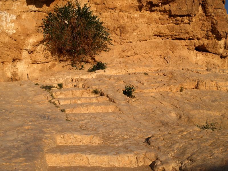 1000-year steps P4121013web.jpg