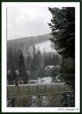 dsc_0040_vail_snowy_bornfre.jpg