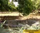 periAzhwAr kainkarya kiNaru