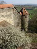 Ronneburg - castle wall and small tower