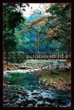 Colours of Bogor