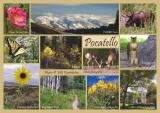 Postcards and other cards