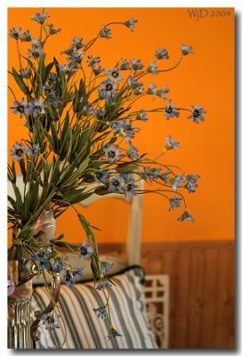 My Tangerine Kitchen ...