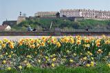 View of Petrovaradin fortress from Novi Sad