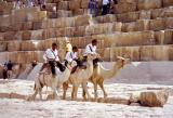 Camel mounted police at the Pyramids