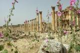 043 Jerash