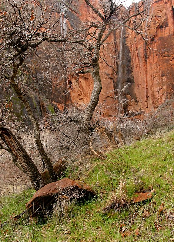 Light Rain and Falls, Upper Zion Canyon