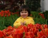 24 April 2004 • Tiptoe through the Tulips