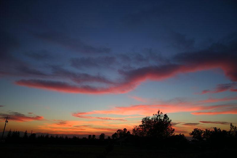 9-9-04<br>Fuzzy Pink Sky