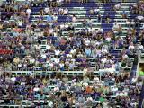 Upper Deck Fans