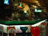 Rainforest Cafe Bar