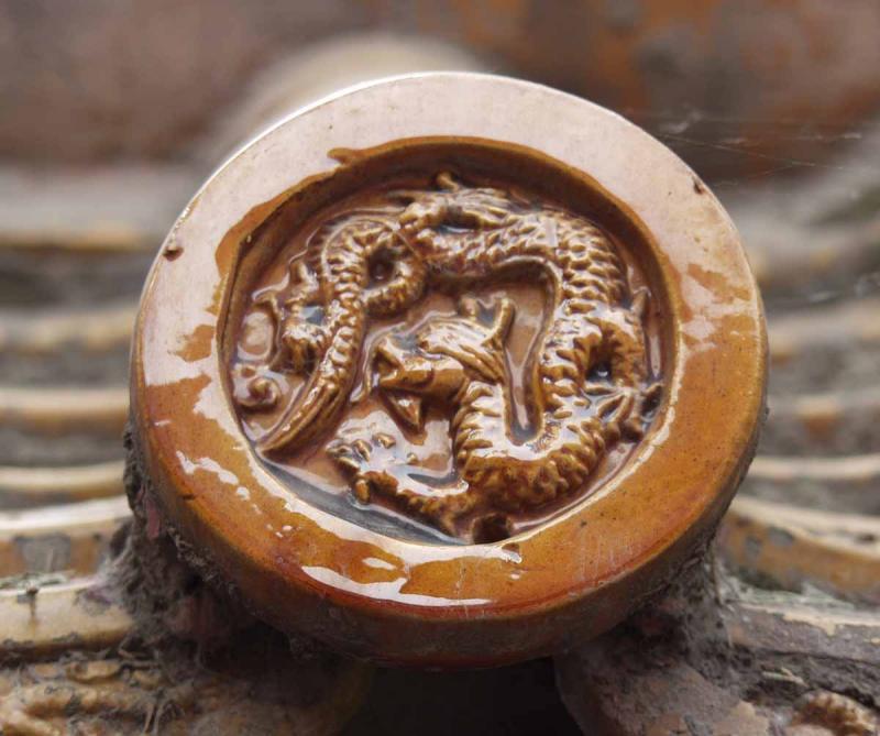 Forbidden Palace Dragon Tile Detail
