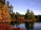 l.l.pond-1000_Image054_p.jpg
