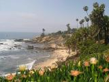 Viewed From Main Beach