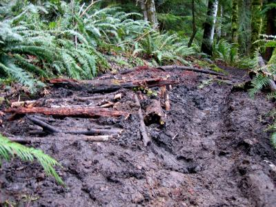 Started work on the perpetual muddy section on Poo Poo Trail