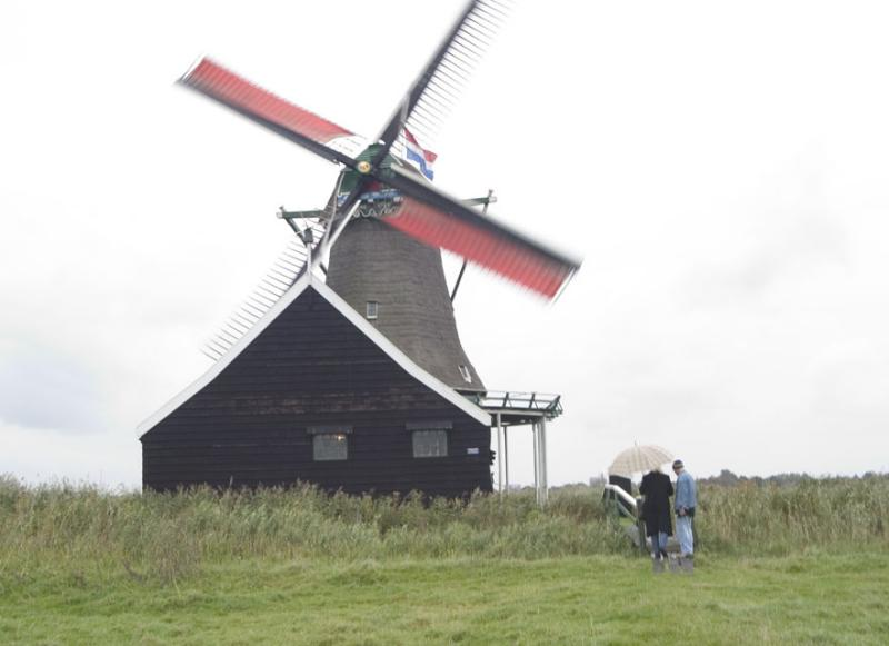 View of Molen Bestand #2