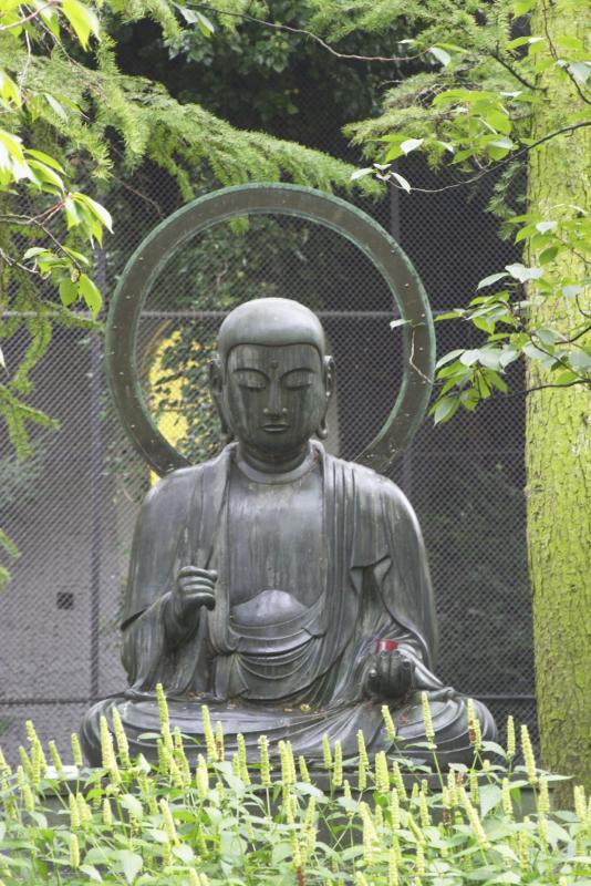 Buddah at the Zoo