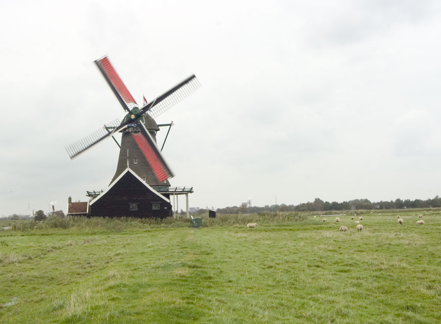 View of Molen Bestand #1