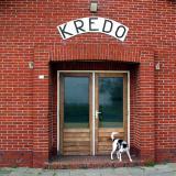 Joop's Dog Log - Wednesday Apr 28