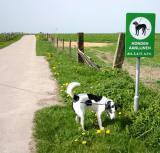Joop's Dog Log - Thursday Apr 29