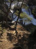 Cascades [D]