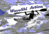 WaveSki Poster